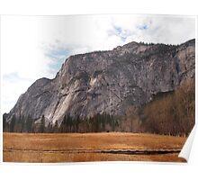 Scene from Yosemite National Park 4 Poster