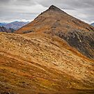Grizzly Trail in the Ogilvies by Yukondick
