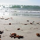 Largs Bay Beach, Summer 2013 by DaveZ