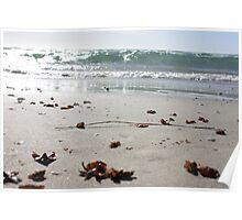 Largs Bay Beach, Summer 2013 Poster