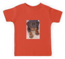 Young Male Rottweiler Making Eye Contact Kids Tee