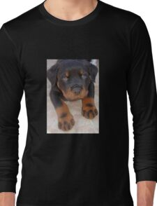 Young Male Rottweiler Making Eye Contact Long Sleeve T-Shirt