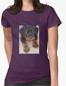 Young Male Rottweiler Making Eye Contact Womens Fitted T-Shirt