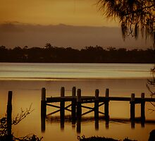 Gold on the Bay by AngelaHumphries