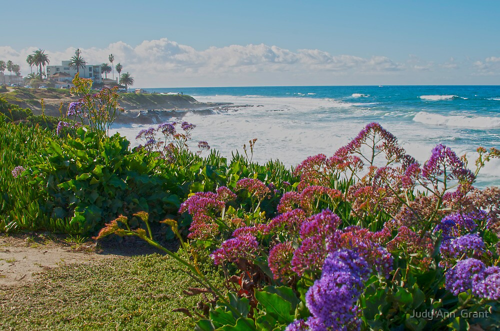 Blooming By The Sea  by Judy Grant
