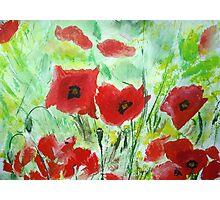 Poppy Field - Wall Art Photographic Print