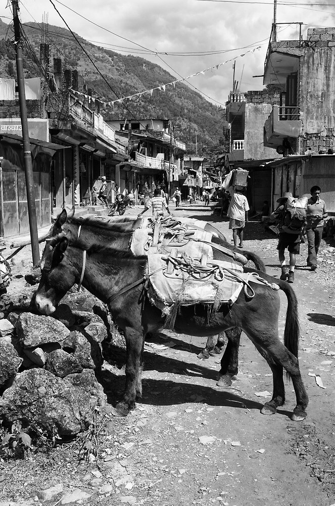 Not just a one horse town? by John Callaway