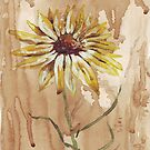 Yellow daisy on a coffee back-ground by Maree Clarkson