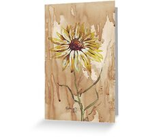 Yellow daisy on a coffee back-ground Greeting Card