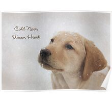 Cold Nose Warm Heart Poster