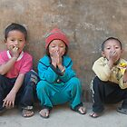 Hear no evil, see no evil, speak no evil.... by John Callaway