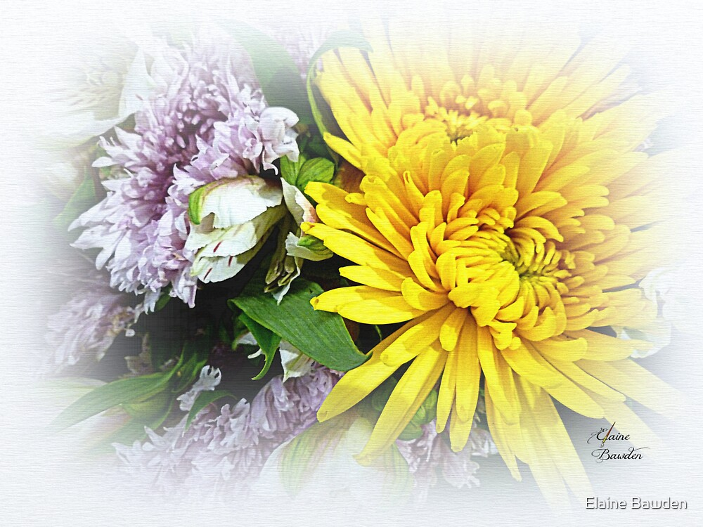 Floral Refreshment by Elaine Bawden