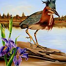 Green Heron Dance by Phyllis Beiser