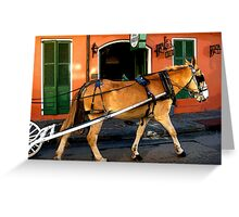 New Orleans French Quarter Mule Louisiana Artwork Greeting Card