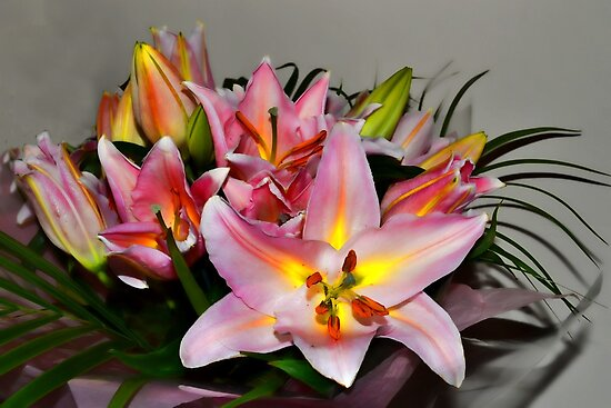 Bright Lilies by lynn carter