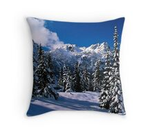 Rural Farm Life Snow Scene Poster Print And Card Throw Pillow