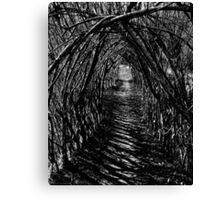 Willow Arch. Canvas Print