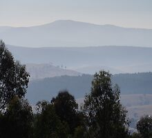Smokey Coal River valley , Sunday , day 3 of the Tasmanian bush fires by Ron Co