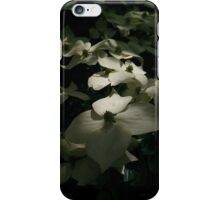 Chinese Dogwood in flower iPhone Case/Skin