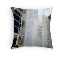 Book Installation [Day 6 - week 4.] Throw Pillow
