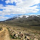 Peavine Mountain,Reno Nevada USA by Anthony & Nancy  Leake