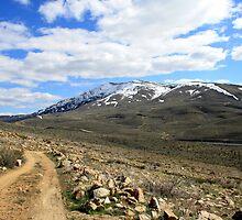 Peavine Mountain,Reno Nevada USA by Anthony & Nancy  Leake