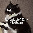 Challenge Winner Banner - My Adopted Kitty by quiltmaker