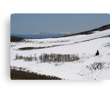 Snow on Peterson Mountain,Reno NV USA Canvas Print