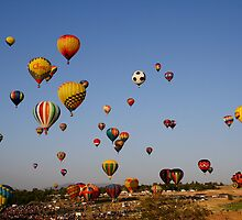 And the race is on!,Great Reno Balloon Race,Reno NV USA by Anthony & Nancy  Leake