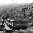 Bridge in Peak District by Pawel J
