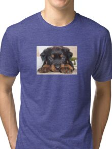 Female Rottweiler Puppy, Head Resting Between Paws Tri-blend T-Shirt
