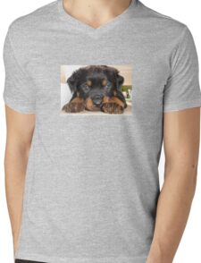Female Rottweiler Puppy, Head Resting Between Paws Mens V-Neck T-Shirt