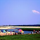Beach Day At Cape Cod by Annie Zeno