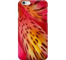 Pink And Yellow Summer Flower iPhone Case/Skin