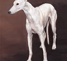 White greyhound by Charlotte Yealey