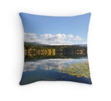 Dutch Lake in Fall Throw Pillow