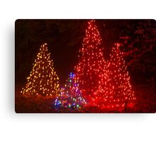 Exciting trees Canvas Print
