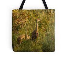 Sandhill Cranes on shore of Lake Tote Bag