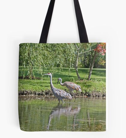 Sandhill Cranes Wading in Shallows Tote Bag