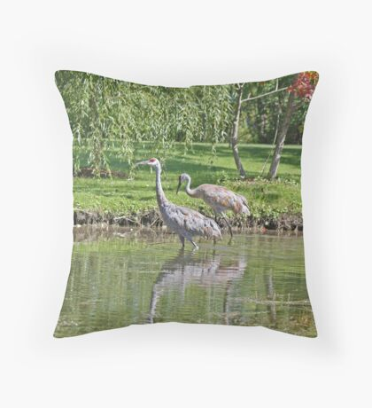 Sandhill Cranes Wading in Shallows Throw Pillow
