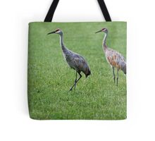 Sandhill Cranes in Grass Field Tote Bag