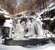 Wyandot Falls & Winter Ice by Gene Walls