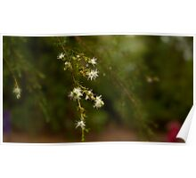 Tree Blossom Dew Poster