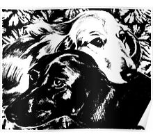 Dogs in Love Graphic ~ black and white Poster
