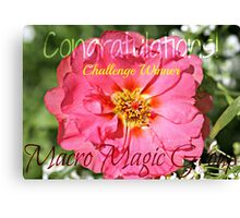 Challenge Winner - Macro Magic Banner Canvas Print