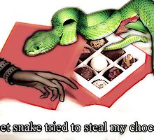 Snake & chocolate greeting card by Kristie Theobald