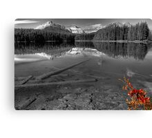 Splash of Red - Selective Coloring Canvas Print