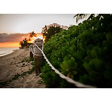 Rope Fence Photographic Print