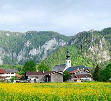 Bavarian meadow by Elemakar