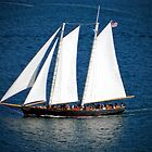 Sailing Schooner by debidabble